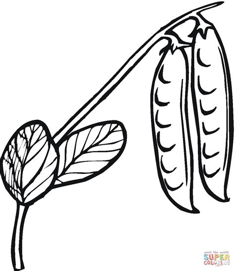 green bean coloring page az coloring pages