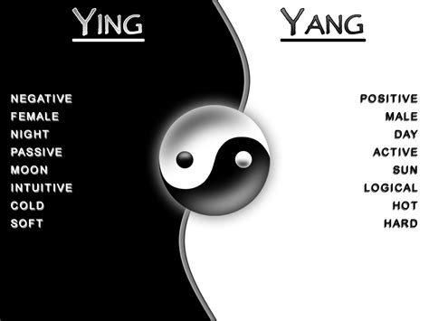 what does the yin yang symbolize shiningsoul yin yang