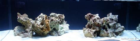 aquascapes online aquascaping with marco rocks dry rock reefbum