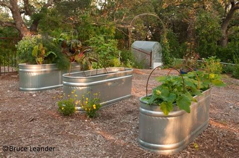 stock tank raised bed garden google search gardening composting tips and ideas pinterest