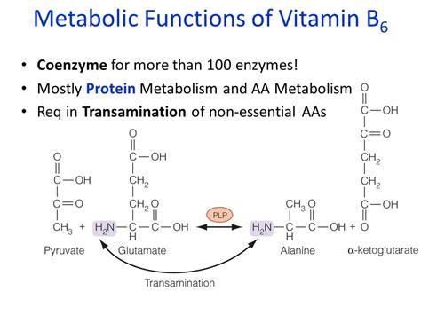 Vitamin Albumin water soluble vitamins ppt