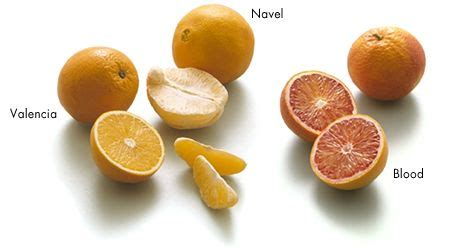 types of orange color types of oranges