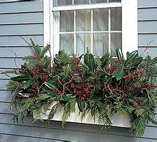 winter plants for window boxes winter window box on winter window boxes