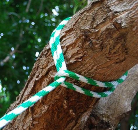 rope swing knots diy tree swing for two in the backyard kidsomania