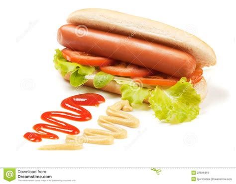 tomatoes and dogs with lettuce and tomato royalty free stock images image 22691419