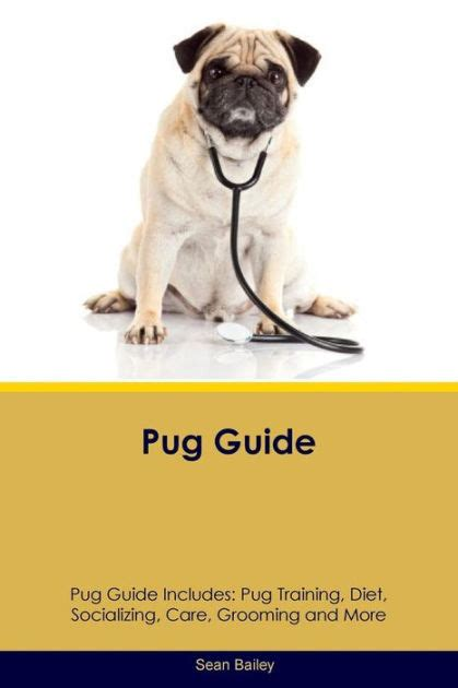 pug diet pug guide pug guide includes pug diet socializing care grooming