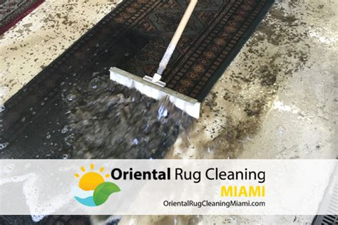 Area Rug Cleaning Miami Rug Cleaning Miami Roselawnlutheran