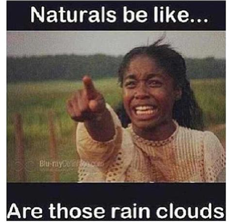 Natural Hair Meme - 12 problems all women with natural hair will understand