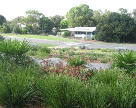 Mount Annan Botanic Gardens Cafe Gardensonline Mount Annan Botanic Garden Gardens Of The World