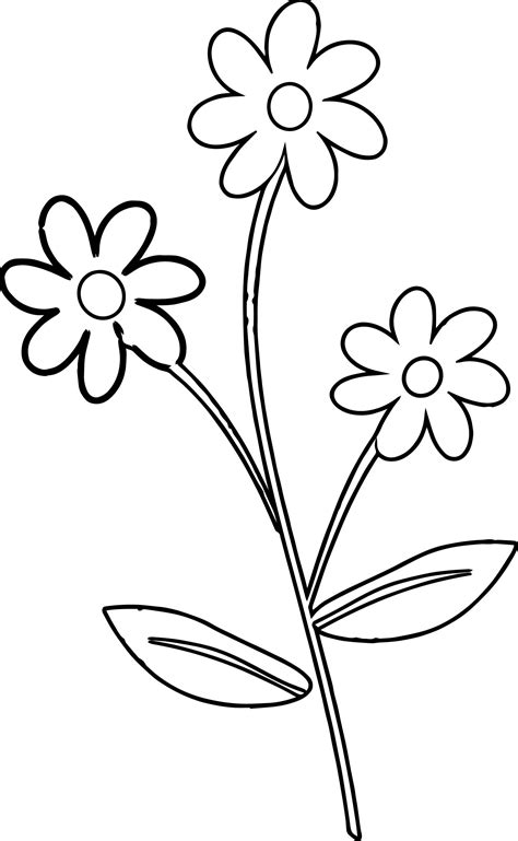 rose border coloring page luau theme coloring page clipart panda free images