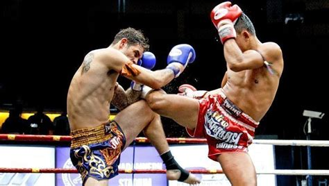 Kaos Sport Boxing Muay Thai Kick Boxing A Beginner S Guide To Footwork And Guards In Muay Thai
