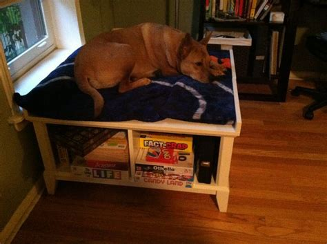 dog window bench raised dog bed 2 storage benches back to back a