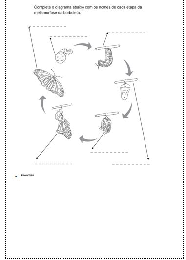 A borboleta azul: Livro, atividades de compreensão e