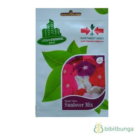 benih vinca sunlover mix  biji panah merah