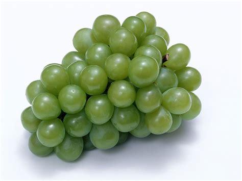 imagenes de uvas sin fondo racimo de uvas dibujo imagui