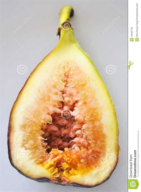 fig fruit cut in half royalty free stock photos image 16345178