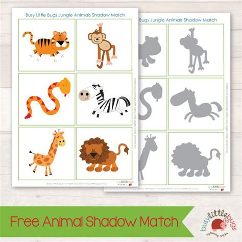 printable zoo animal matching game 622 best images about thema dierentuin kleuters zoo