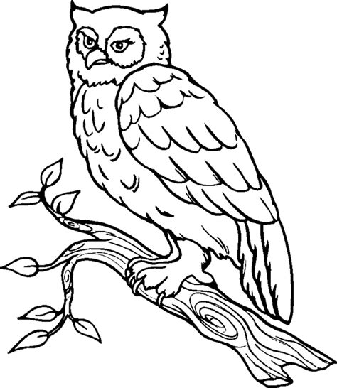 Great Horned Owl Coloring Page great horned owl coloring pages coloring home