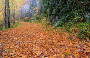 smoky mountain fall colors the 5 best smoky mountain tn cabins for viewing fall colors