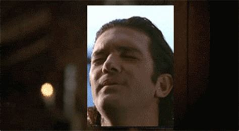 Banderas Meme - what movie is that antonio banderas gif from page 4