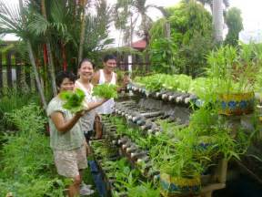 container gardening for food can food crops be grown safely in plastic containers
