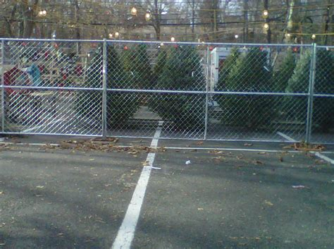 ridgewood ymca christmas tree lot opens november 29th