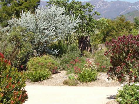 Western Australia Australian Native Plants Nursery | australian native plants resources 800 701 6517