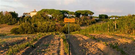 fattoria di fiorano biosagra for alla fattoria di fiorano agrodolce