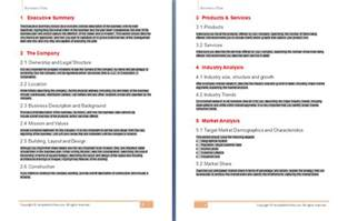 Sle Business Plan Template Word by Business Plan Template Free Free Business Template