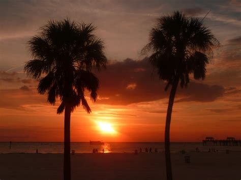 South Florida Detox Sunset by Sunset At Clearwater Florida Picture Of Sarasota