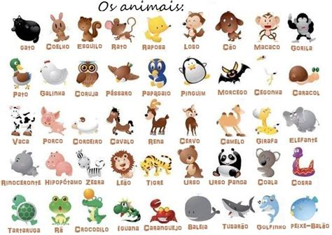 imagenes de animales con w nombres populares portugu 233 s y cient 237 ficos de los