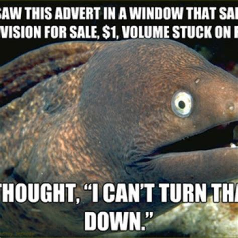 Bad Joke Eel Meme - we don t want to offend any overweight human beings now