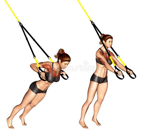 trx bench press exercising trx suspender chest press stock illustration