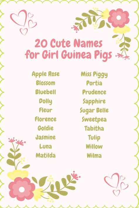 girl guinea pig names cute female guinea pig names