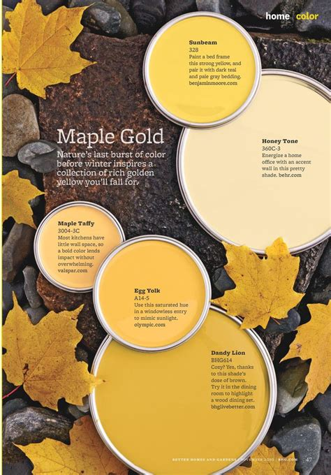 best selling popular shades of yellow gold paint colors 3455 best better homes and garden magazine images on