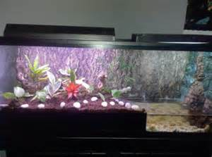 Aqua Terra Habitats : Aquarium Maintenance, Aquarium Cleaning, NYC, LI