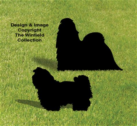 shih tzu for sale in wisconsin shih tzu pattern patterns for