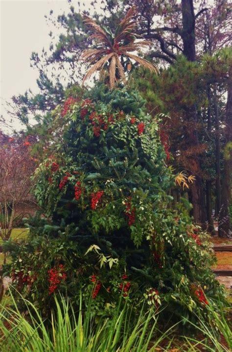 34 best images about lsu botanic gardens at burden on