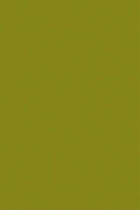 Light Olive by Light Olive Background Free Stock Photo Domain Pictures