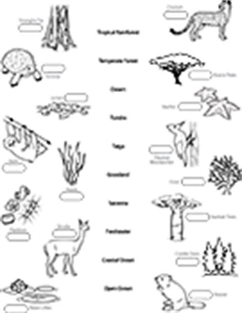 ask a biologist coloring page key biome coloring sheet answers murderthestout