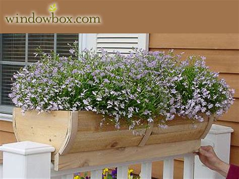 deck rail planter boxes mb 954 wb 2 jpg