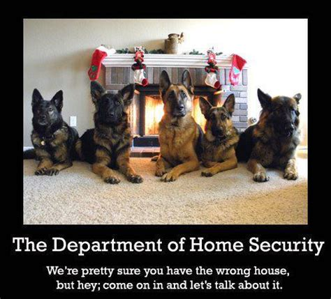 the department of home security