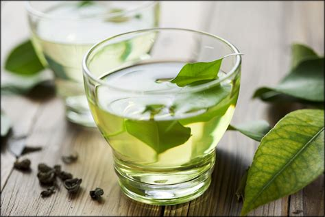 Teh Matcha 8 important health benefits of green tea why you should