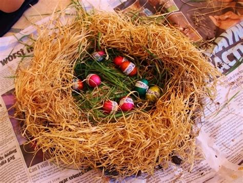 the birdmaker s nest where your treasure will be found safe and sound books s treasures make your own nest this easter