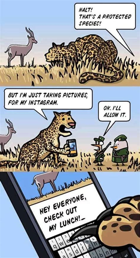 Cartoon Sex Memes - funny animal cartoon strips