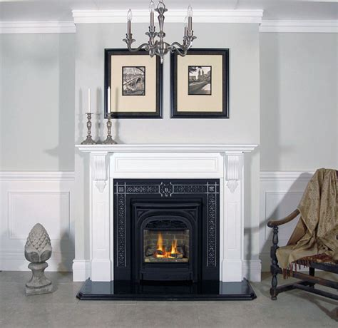 Traditional Gas Fireplaces by Gas Fireplace Inserts Traditional Indoor Fireplaces