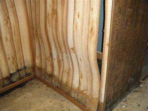leaky basement warped wall paneling