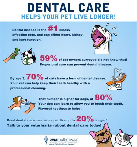 our health educators 171 social health association dental pope animal hospital