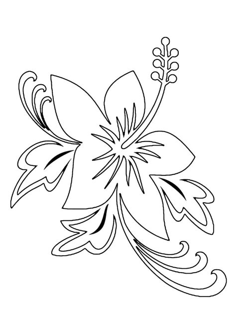 luau flower coloring page tropical flower drawings cliparts co