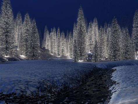 images of christmas scenery christmas scenery free download hd snowy christmas scene